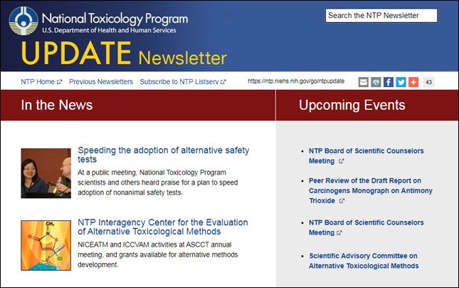 NTP update newsletter