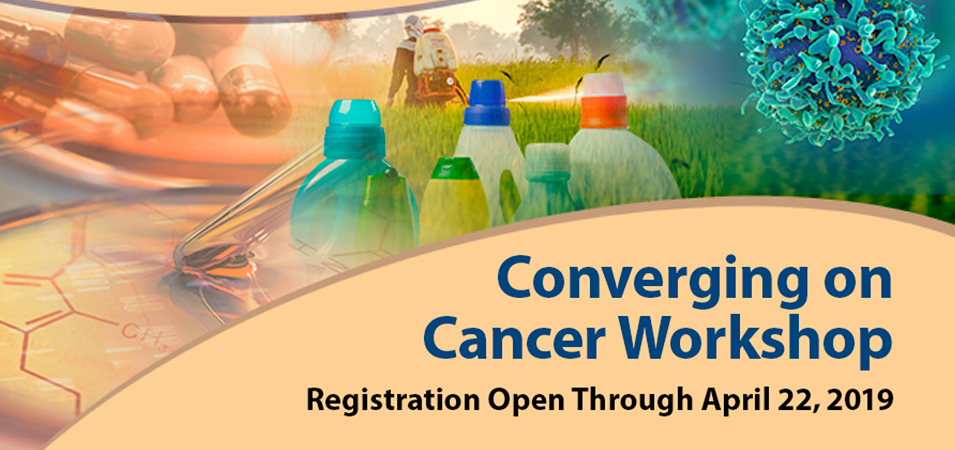 converging on cancer workshop banner image