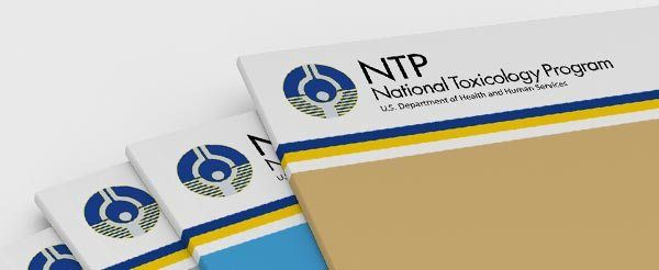 stack of NTP reports