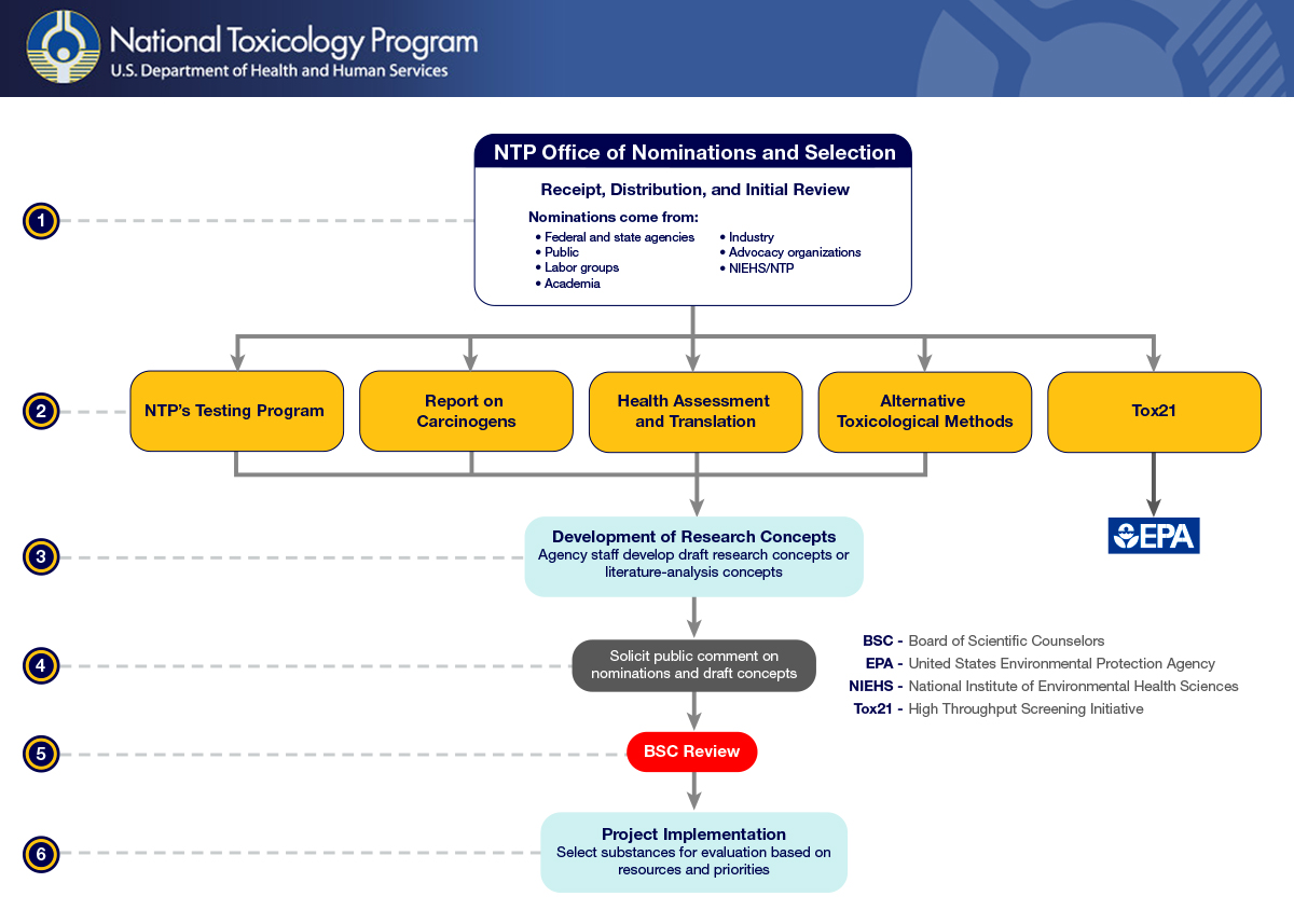 Diagram Of The NTP Nomination Process